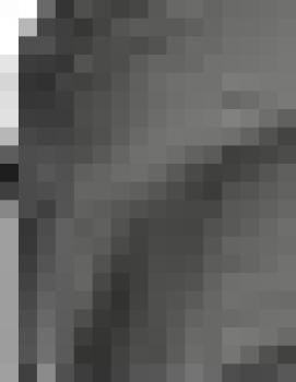 METALES DE BIELA ISX EGR M-2882087